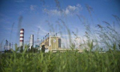 Enea weźmie udział w aukcjach OZE z blokiem biomasowym w Elektrowni Połaniec