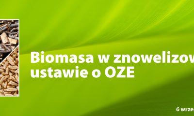 Biomasa w ustawie o OZE