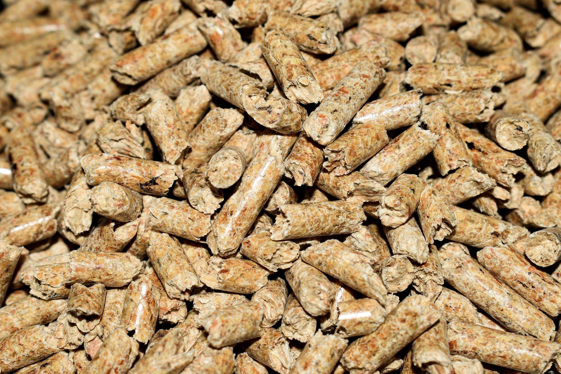 9.11.2020 rusza nabór na dofinansowanie budowy instalacji do produkcji paliwa z biomasy rolnej i leśnej w postaci pelletu