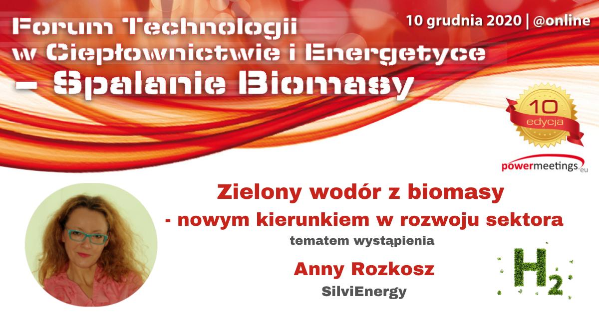 Zielony wodór z biomasy jako nowy kierunek w rozwoju sektora
